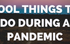 5 Productive and Fun Things to do During a Pandemic!